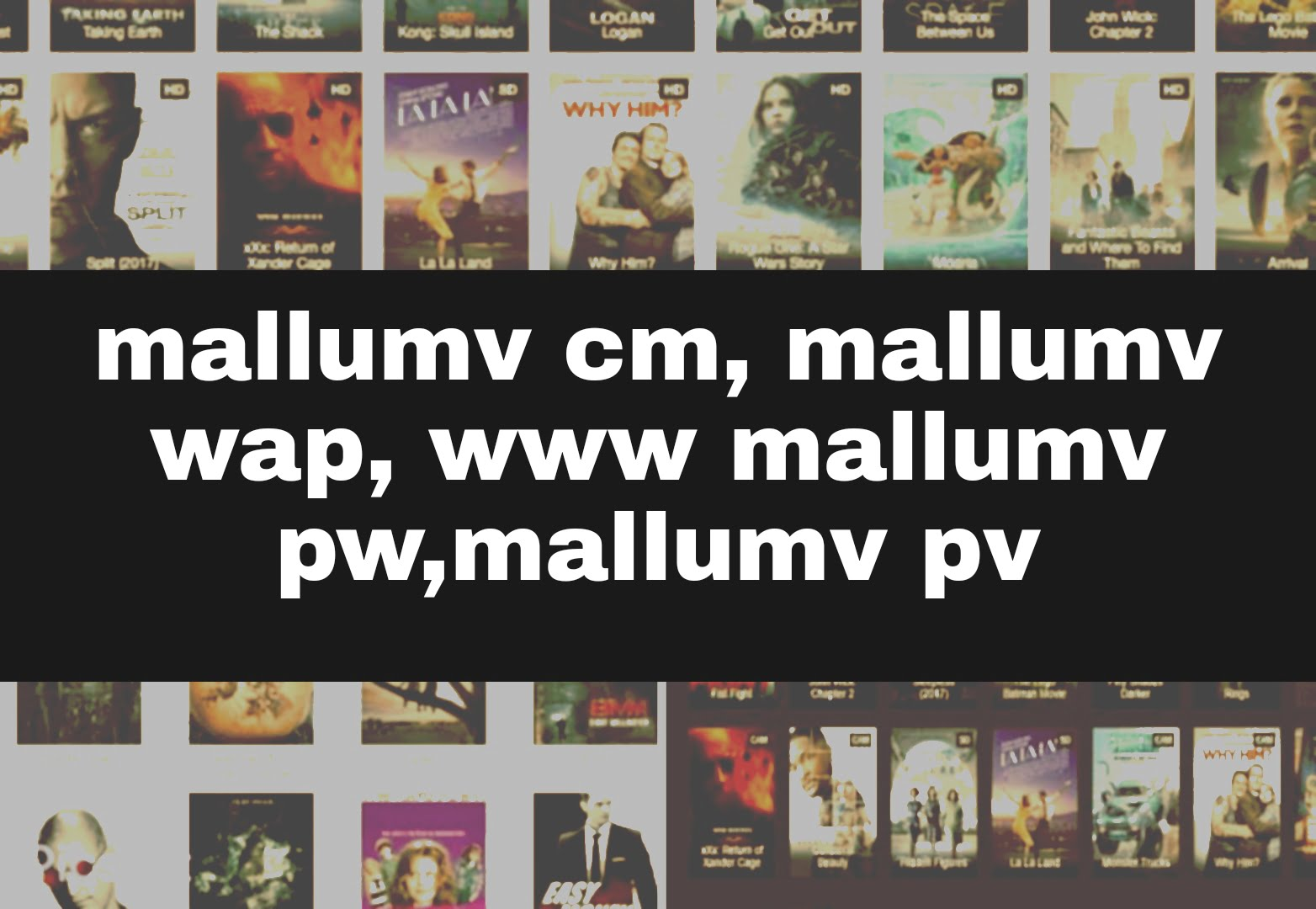 Mallumv PW, Mallumv PM, Mallumv Cz, Mallumv PV 2021 – Watch Illegal HD Movies Download Website