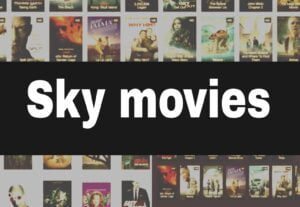 SkymoviesHD.me 2021 – SkymoviesHD Bollywood Hollywood Movies Download